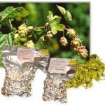 Citra 15,6% pellet (100g)