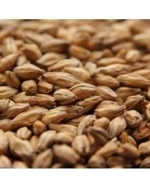 Organic Beech Smoked Barley Malt 25kg