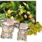 H. Northern Brewer 7,0% pellet (100g)