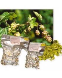 East Kent Goldings 5,1% pellet (100g)